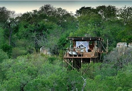 sunsafaris-1-kingston-treehouse.jpg