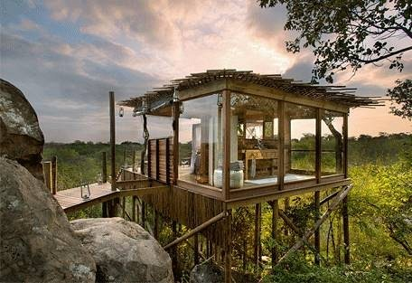 sunsafaris-2-kingston-treehouse.jpg