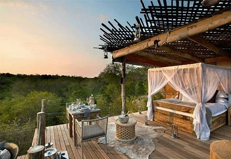 sunsafaris-3-kingston-treehouse.jpg