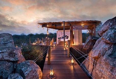 sunsafaris-5-kingston-treehouse.jpg