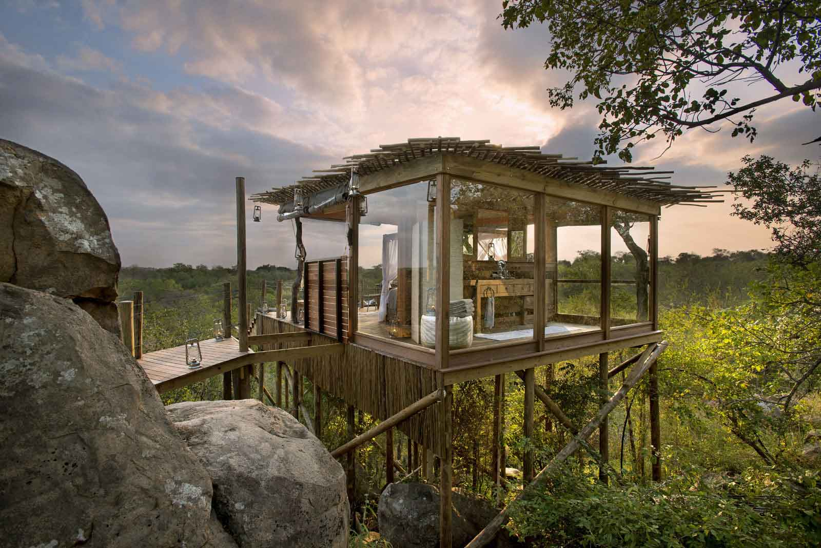 The Kingston Treehouse Sun Safaris
