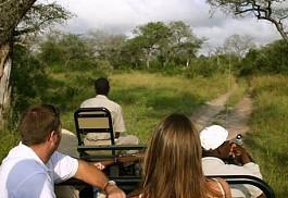 sunsafaris-1-nottens-bush-camp.jpg