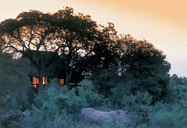 sunsafaris-1-sabi-sabi-little-bush-camp.jpg