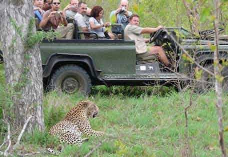 sunsafaris-14-Umkumbe-Safari-Lodge.jpg