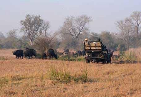 sunsafaris-15-Umkumbe-Safari-Lodge.jpg