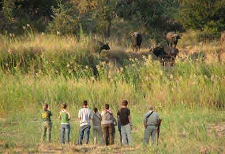 sunsafaris-16-Umkumbe-Safari-Lodge.jpg