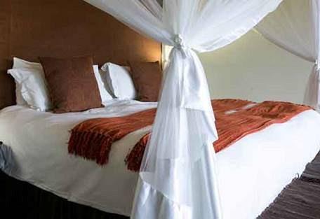 sunsafaris-8-Umkumbe-Safari-Lodge.jpg