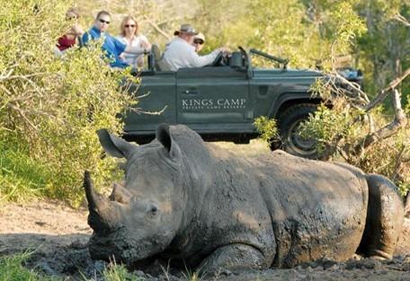 4-rhino-drive-kings-camp.jpg