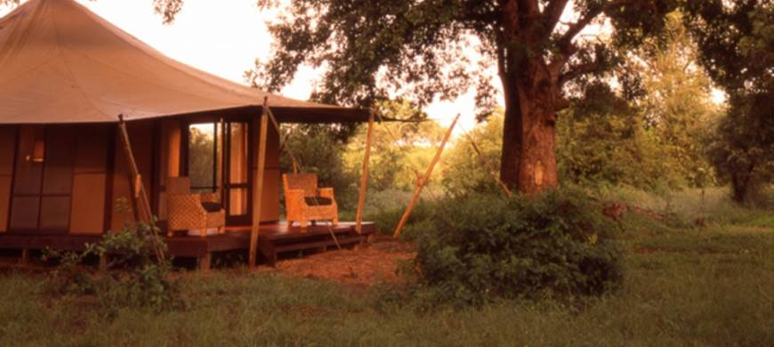 sunsafaris-3-ngala-tented-camp.jpg