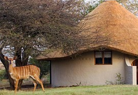 456a_zululandsafari_suite-exterior.jpg
