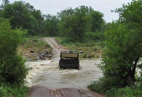 456_makalali_rivercrossing.jpg
