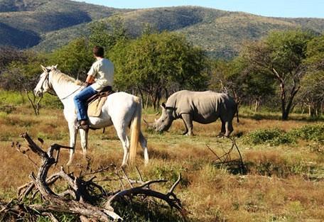456_mabalingwe_horseride.jpg
