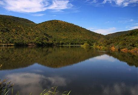 456_mabalingwe_lake.jpg