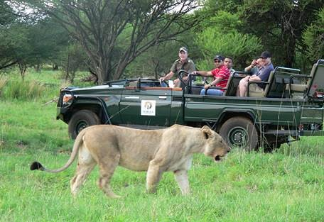 sunsafaris-6-welgevonden-game-reserve.jpg