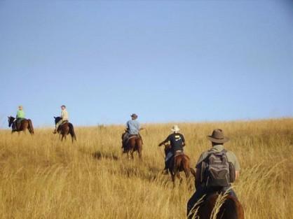 08-horse-riding.jpg