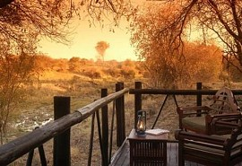 sunsafaris-1-madikwe-river-lodge.jpg