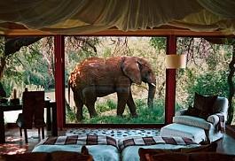 sunsafaris-10sanctuary-makanyane-safari-lodge.jpg
