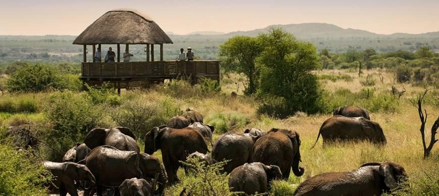 sunsafaris-3-madikwe-game-reserve.jpg