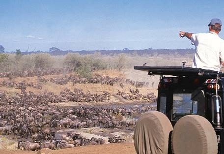 sunsafaris-10-tanzania-safari-operator.jpg