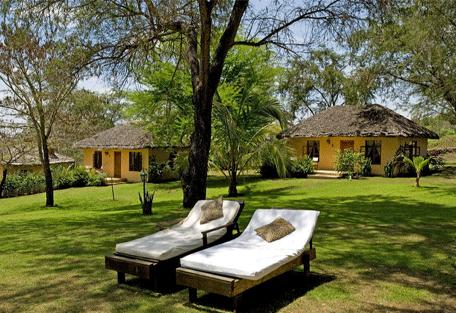 456h_arusha-safari-lodge_sun-beds.jpg