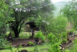 456a_isoitok-camp_exterior.jpg