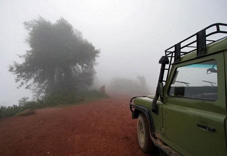 serengeti-landy.jpg