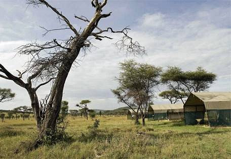 sunsafaris-6-bologonya-under-canvas-safari-camp.jpg