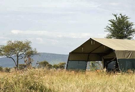 sunsafaris-7-bologonya-under-canvas-safari-camp.jpg