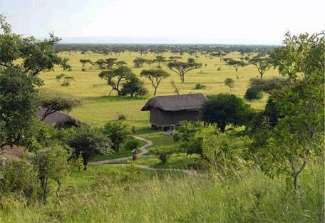 sunsafaris-5-eco-lodge-africa.jpg