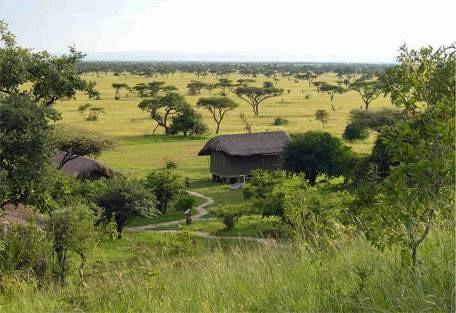 sunsafaris-5-eco-lodge-africa.jpg