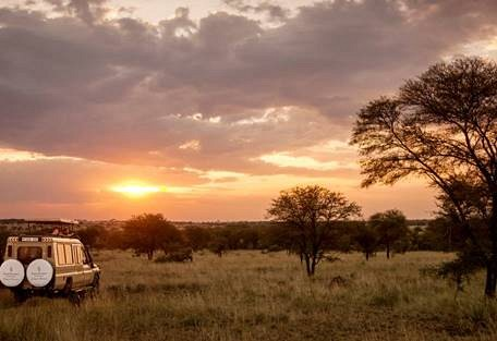 sunsafaris-9-four-seasons.jpeg