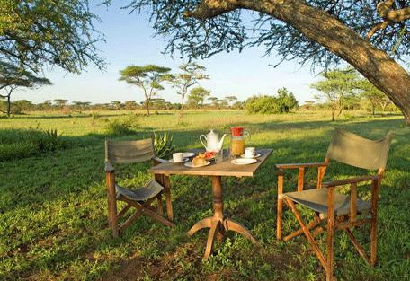456e_ikoma-bush-camp-breakfast.jpg