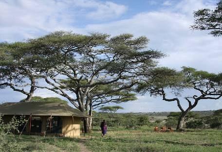 sunsafaris-2Lemala_ndutu_mobile_Tented_Camp.jpg