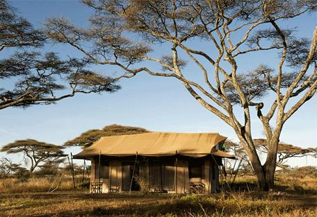 456b_masek-under-canvas-tented-camp_exterior2.jpg