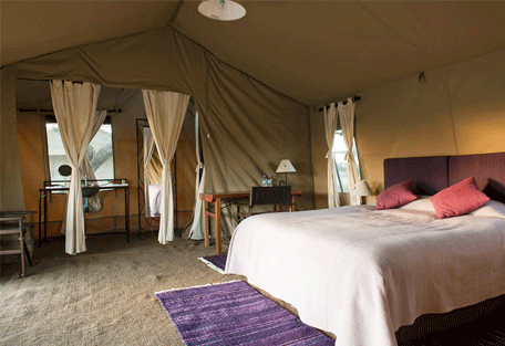 456c_masek-under-canvas-tented-camp_interior-bedroom.jpg