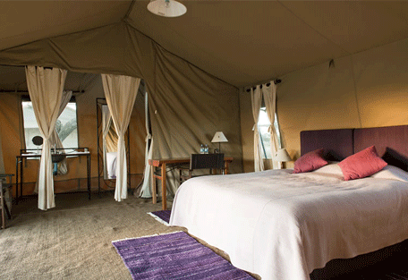 456d_moru-under-canvas-tented-camp_bedroom.jpg