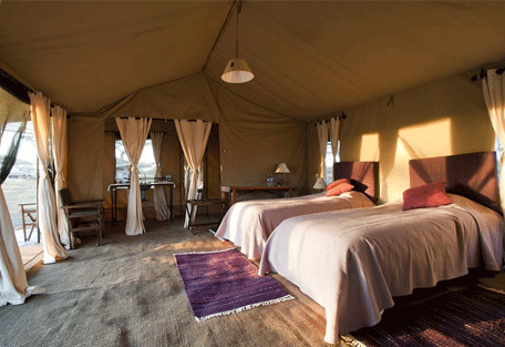 456c_moru-under-canvas-tented-camp_bedroom2.jpg