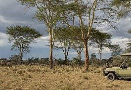 sunsafaris-1-namiri-plains.jpg