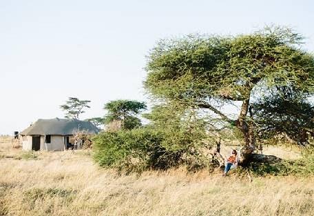 sunsafaris-9-namiri-plains.jpg