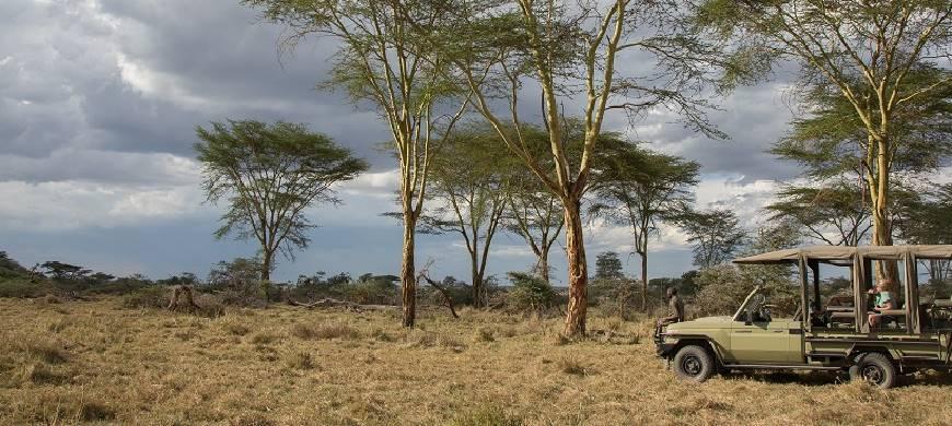 sunsafaris-1-namiri-plains.jpg