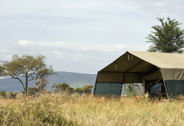 456a_ndutu-under-canvas-tented-camp_exterior-tent2.jpg