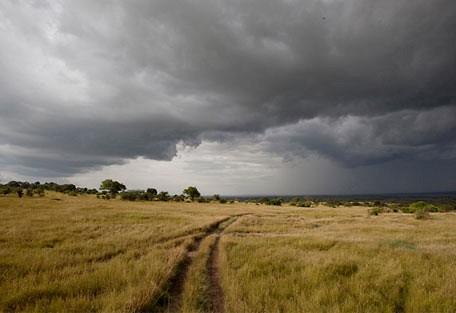 stormy_plain.jpg