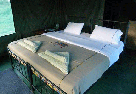 456b_serengeti-halisi-camp.jpg
