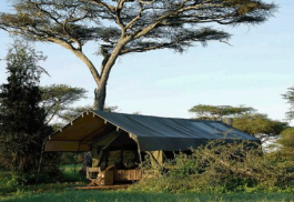 456a_serengeti-safari-camp_tent.jpg