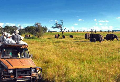 456e_serengeti-safari-camp_game-viewing.jpg