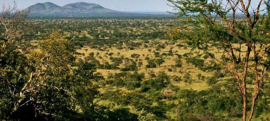 870_simbalodge_landscape.jpg