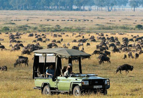 456h_serengeti-sopa-lodge-game-viewing.jpg