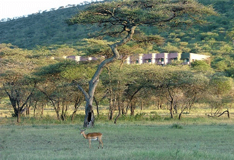 456i_serengeti-sopa-lodge-outdoor.jpg