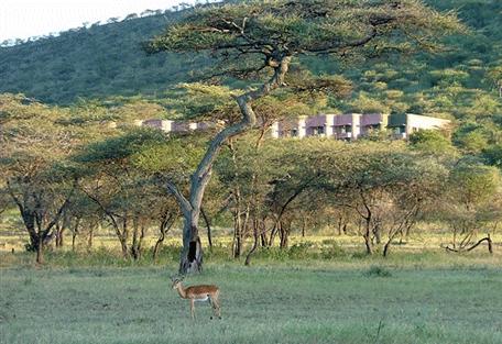456i_serengeti-sopa-lodge-outdoor.jpg