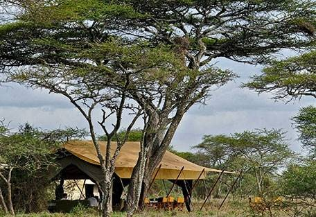sunsafaris-7-andBeyond-serengeti-under-canvas.jpg
